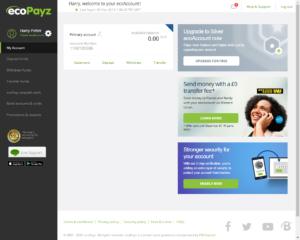 ecoPayz Verification - Account overview