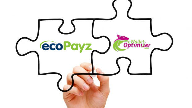 ecoPayz Fees (eWO Partner)